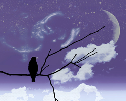 Space theme bird on branch blue sky